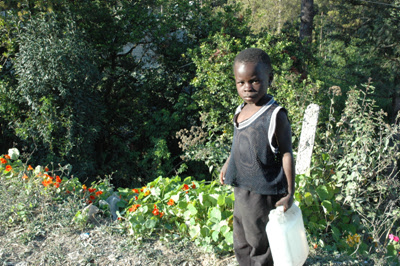 Innovative System to Provide Clean Drinking Water to Developing Countries