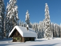 bigstockphoto_white_christmas_410325_small
