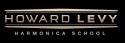 levy_logo_blkcrop