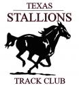 stallionshorselogo