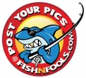 fishfools_logo_gold_tooth_clean_2_small
