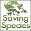 saving_species_logo_ark_square