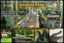 wildlife_park_grand_opening_flyer