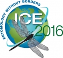 ice2016_logo_art