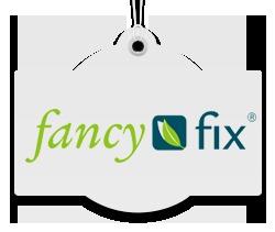 fancyfixlogo2