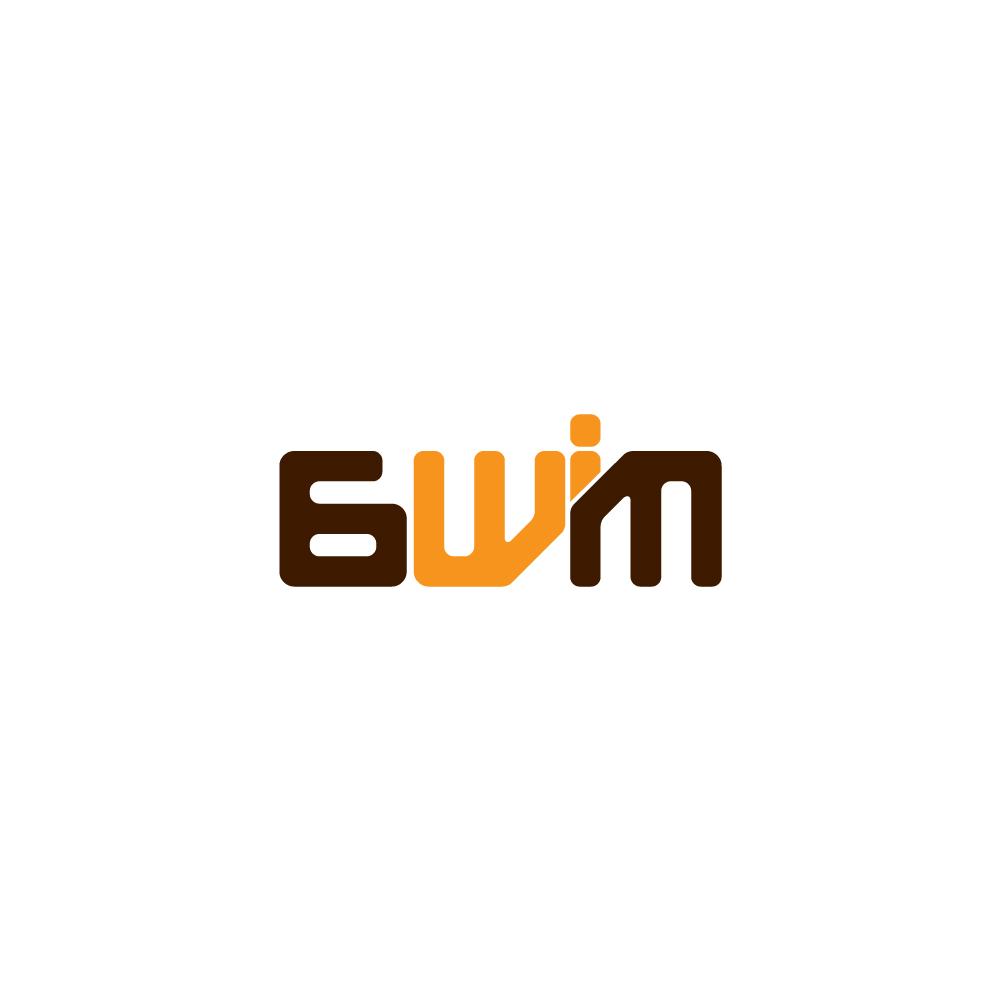 chad_lieberman_ian_6wim_llc_logo