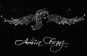amia_music_female_star_lights_music_logo_w_sig_