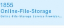 online_file_storage_logo